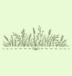 green pattern with herbs and flowers vector image