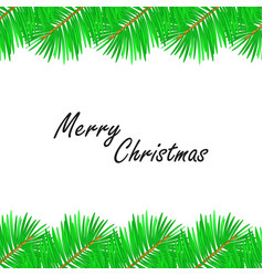 merry christmas with christmas tree branches on vector image