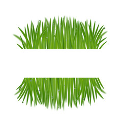 natural frame from grass with bokeh effect vector image