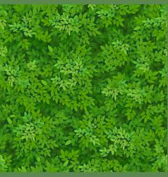 seamless green foliage pattern vector image