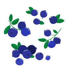 set cartoon blueberries isolated on white vector image