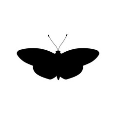 Silhouette of white butterfly vector