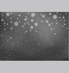 snowfall on dark transparent background vector image
