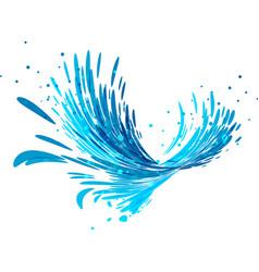 splash wave on white vector image