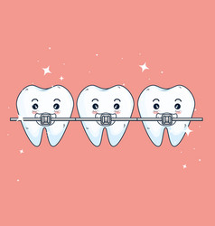 Teeth orthodontist treatment to dentistry vector