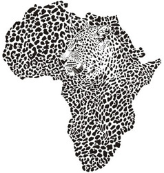 Leopard skin and head in silhouette Africa vector image