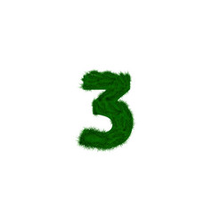 Numbers decorated with pine branches vector