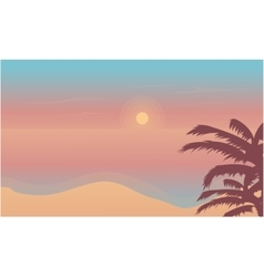 Beach at sunset landscape of silhouette vector image