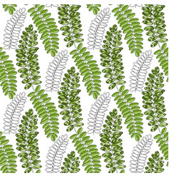 Bright textile pattern with acacia leaves vector