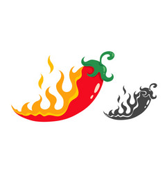 chili pepper in fire vector image