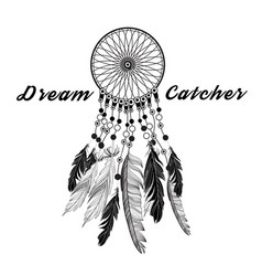 dreamcatcher graphic tale vector image