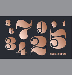 number font font numbers in classical french vector image