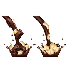 realistic chocolate flows with nuts and vector image