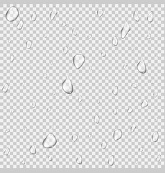 realistic pure and transparent water drops set vector image