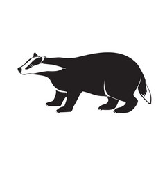 badger on short legs isolated on white background vector image vector image