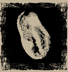 thumbprint on grunge background vector image