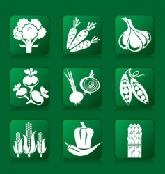 vegetable buttons vector image