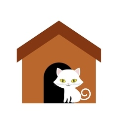 cat animal domestic furry brown house vector image vector image