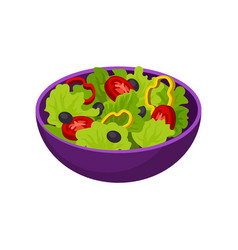 bowl with vegetable salad natural and healthy vector image