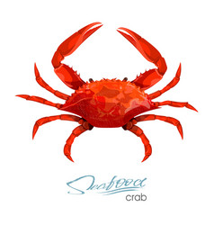 Crab in cartoon style isolated vector