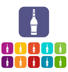 design bottle icons set flat vector image
