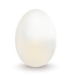 easter white egg on a white background vector image