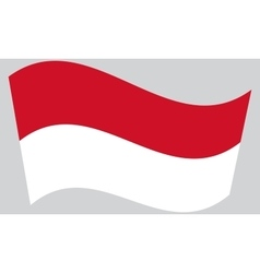 Flag of indonesia waving vector