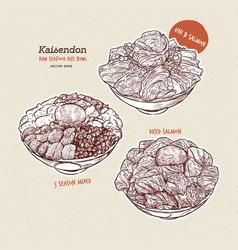 Kaisen donburi set a bowl rice with sashimi on vector