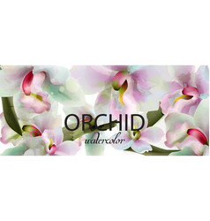 orchid flowers watercolor background vector image