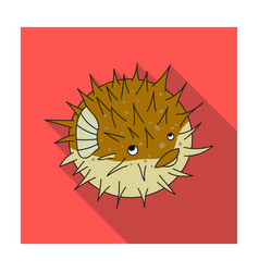 Porcupine fish icon in flat style isolated on vector
