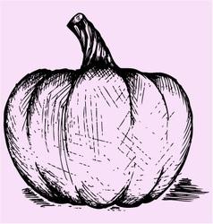 Pumpkin doodle style vector