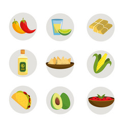 set mexican food with tequila and avocado vector image