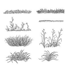 set sketch grass silhouettes vector image