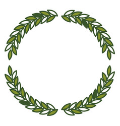 olive branches forming circle in green color vector image