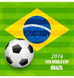 Soccer ball with Brazilian Flag vector image
