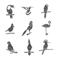 Bird Black Icons Set vector image