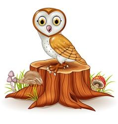 Cute barn owl sitting on tree stump vector image vector image