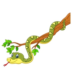 Cartoon green snake on branch vector