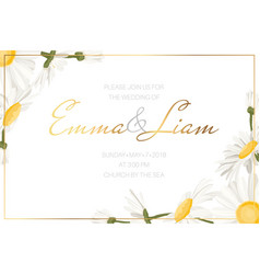 Daisy chamomile flowers wedding invitation card vector