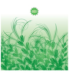 Background with green grass ears of corn vector