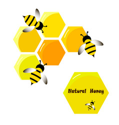 Bee wasp honey in flat style vector