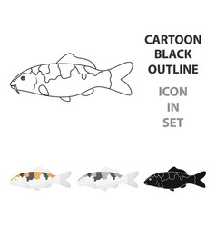 carp-koi fish icon cartoon singe aquarium fish vector image