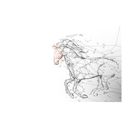 horse run gallop from lines and particle style vector image