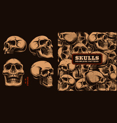 set of different skulls with seamless pattern vector image