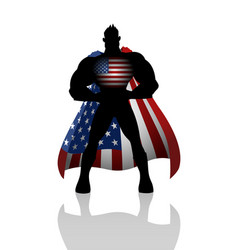 superhero with usa insignia vector image vector image