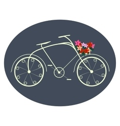 Bicycle for ladies vector image vector image