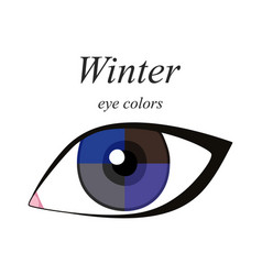 Eye colors for winter type vector