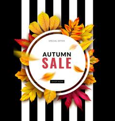 fall sale seasonal autumn promotion design vector image