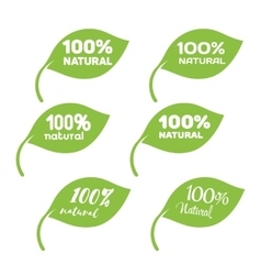 Green leaf with white lettering 100 percent vector