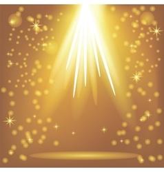 Orange Rays of Magic Lights vector image